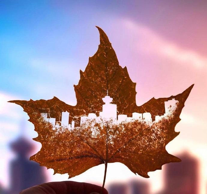 所有入境加拿大者必须提交隔离计划,无计划者将被集中隔离!