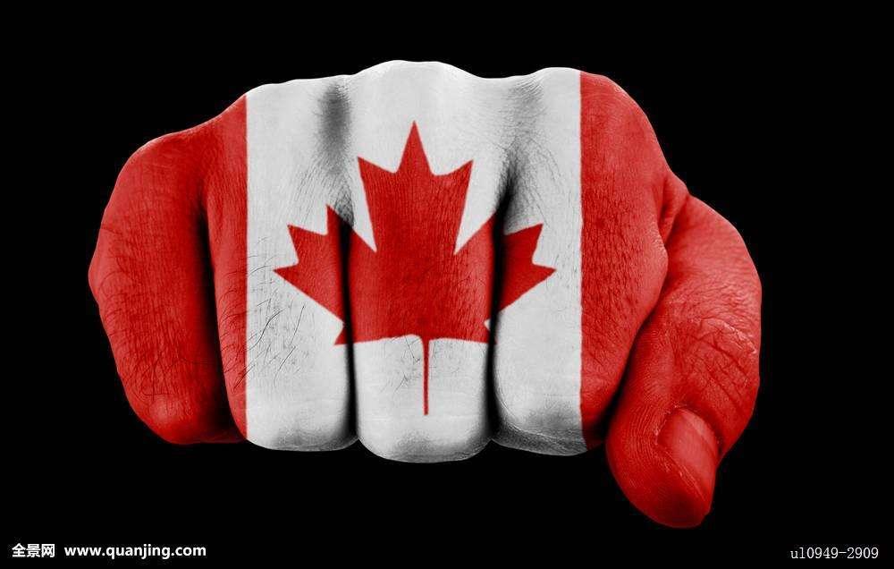 加拿大新移民必须知道的2019年加拿大联邦税和BC省税的变化
