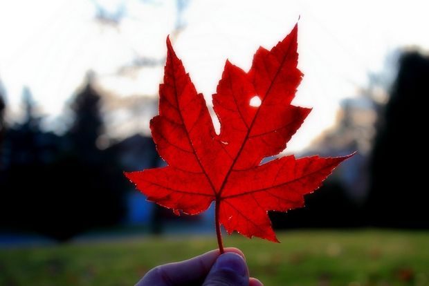 加拿大BC省最低工资下月上涨!