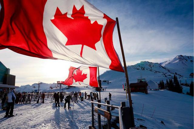 加拿大联邦政府宣布上调牛奶金!