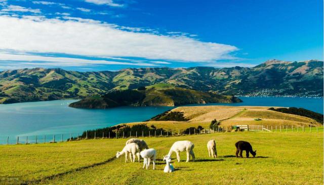新西兰技术移民政策第三次调整细节!