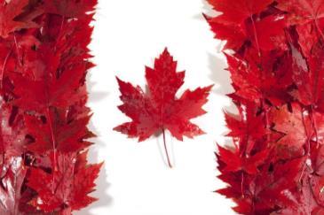 加拿大安省SSM偏远移民试点计划