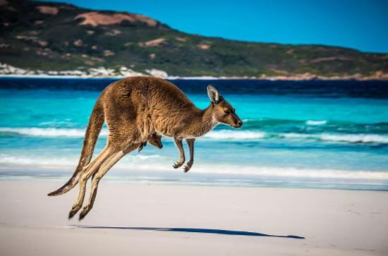 澳大利亚维多利亚州移民政策
