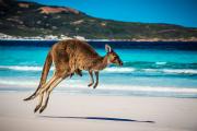 澳大利亚首都领地ACT州政府担保190技术移民签证职业清单大改革!
