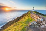 新西兰移民局官宣5年学生签证即日起成为正式签证