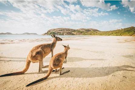 2019澳洲投资移民洲巡
