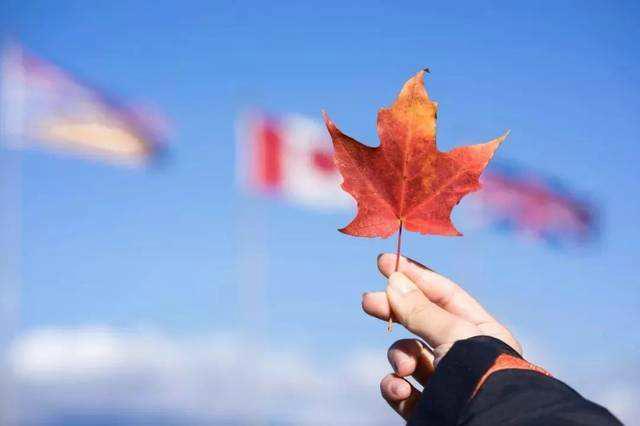 加拿大雇主但保移民洲巡出国