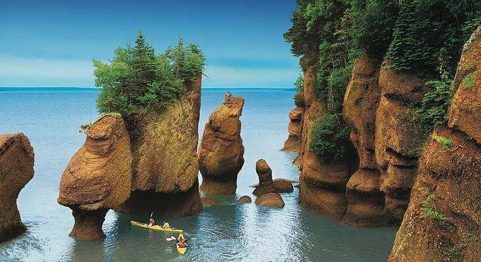 加拿大NB芬迪国家公园