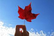 加拿大联邦政府官宣,或将可能在7月1日后解除旅行禁令恢复正常!