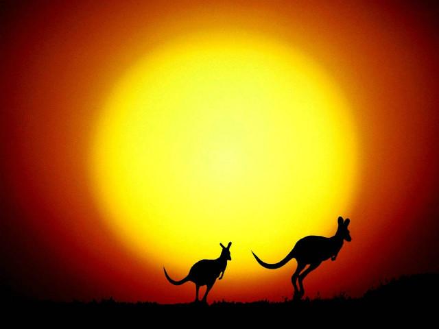 澳大利亚移民入境豁免洲巡出国