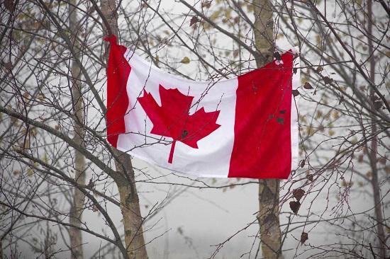 加拿大BC省科技试点发布最新邀请,移民手续费上涨750加元!