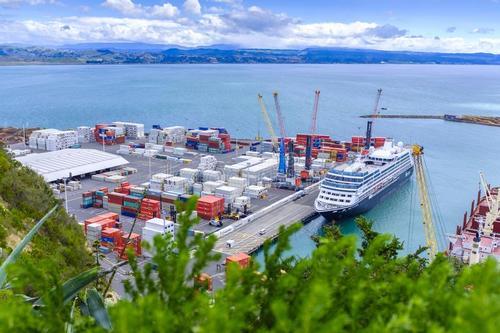 新西兰内皮尔海港洲巡出国