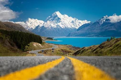 新西兰2019人口普查洲巡