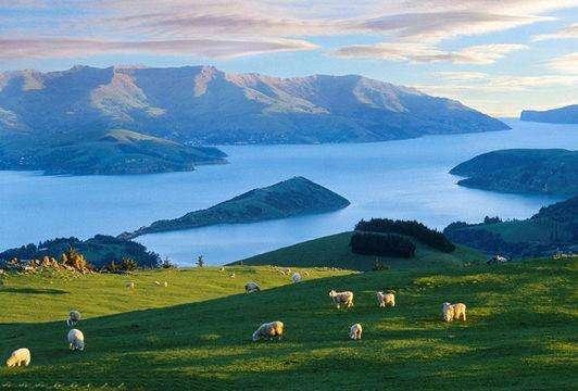 """""""软实力""""优秀的新西兰最宜居"""