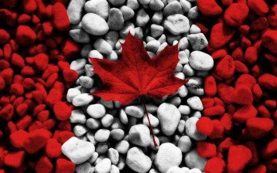 加拿大新移民登陆指南