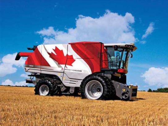 加拿大移民试点AFIP