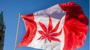 加拿大新不伦瑞克省法语类别技术移民永居签证更新年龄要求