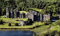 爱尔兰留学学校和专业该如何选择?